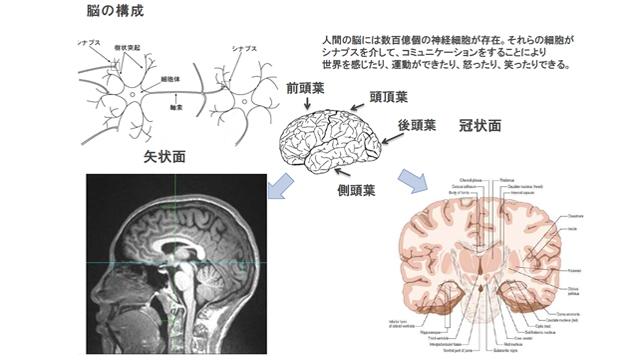 脳情報通信技術の理論と実践 ~未来を切り拓く多様で多次元な「人間」に関わるアナリティクス