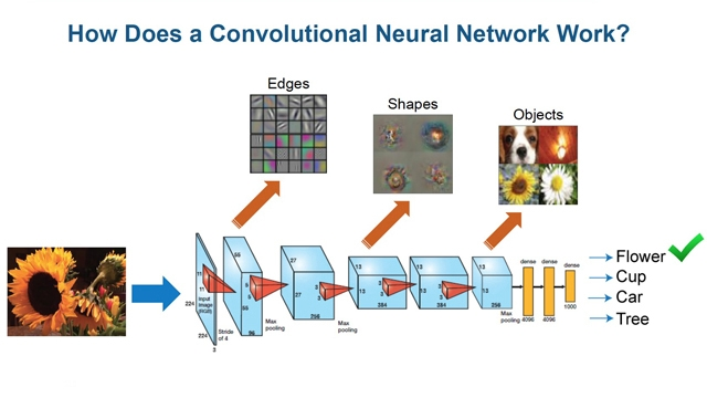 Master Class: Deep Learning for Signals