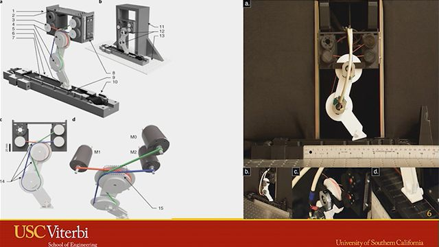 This session discusses the contribution of robots and the full potential that robots can bring when they can learn efficiently.  This session will also discuss the inspiration from biology on with regard to kinematic feedback and learning speed.